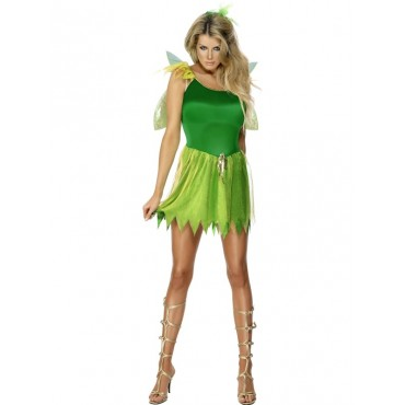 Costume Adult Fairy...