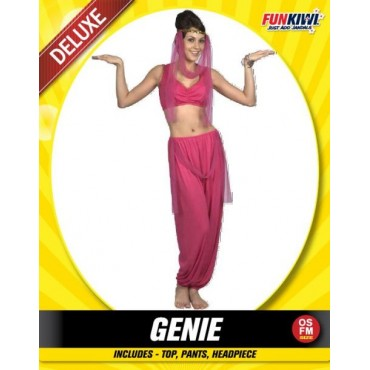 Costume Adult Genie Pink