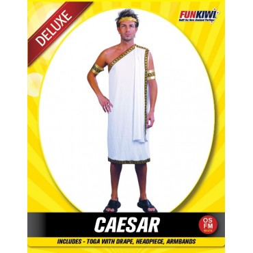 Costume Adult Toga Caesar Robe